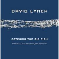 lynch-737007