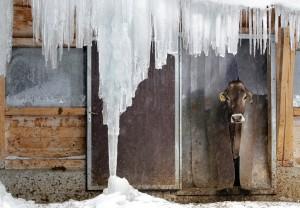 Arno Balzarini/Keystone/Associated Press