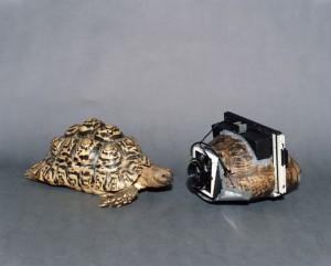 Turtleshell camera by Taiyo Onorato and Nico Krebs via Flavorwire