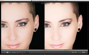 VSCO Film on the Left, Nik Color Efex on the Right, 100% crop